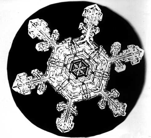 Snowflake2_1